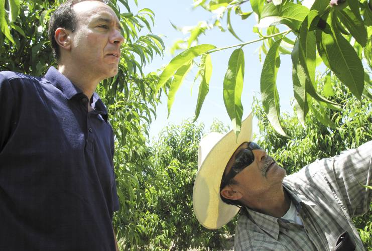 California Supreme Court upholds law granting labor contracts for farmworkers