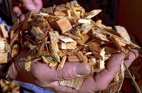 William O'Brien: Why are we subsidizing biomass plants that are not locally owned?