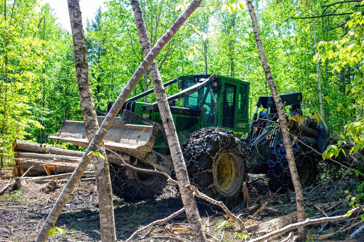 logging industry jobs nh loggers struggle as low grade wood loses its value