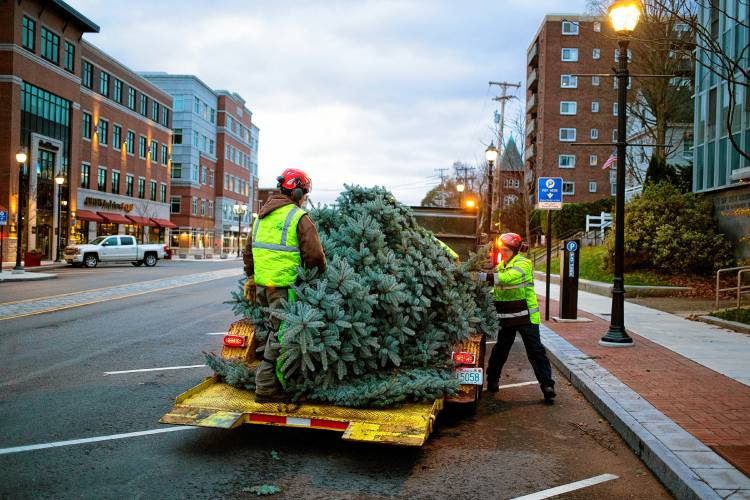 Optimists offers Christmas tree sale downtown near The Square