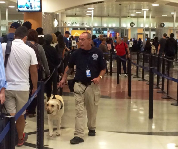 TSA lines short at Bradley International Airport despite Memorial Day weekend travel