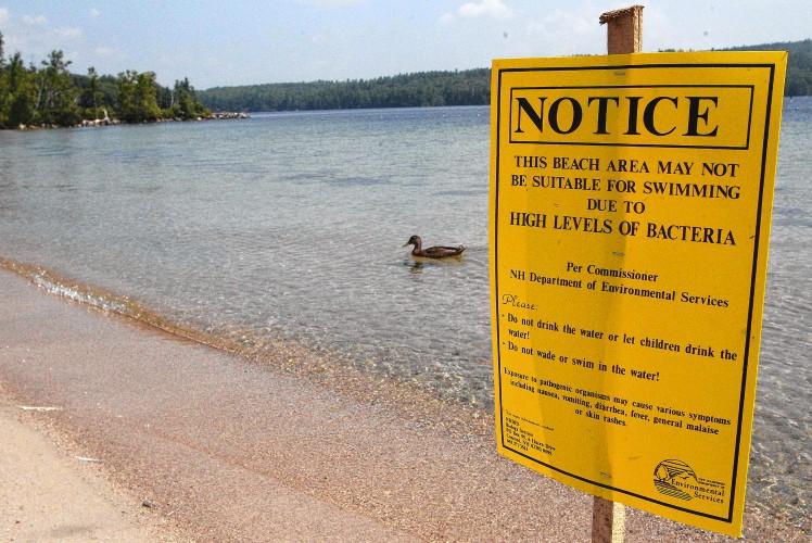 Sunapee beach water samplings exceed bacteria standard