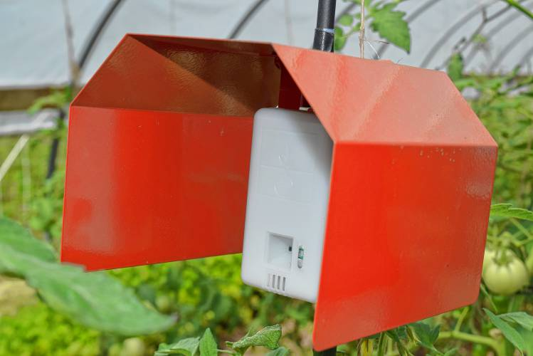 Internet Of Things Thats Old Hat How About An Internet Of Tomatoes