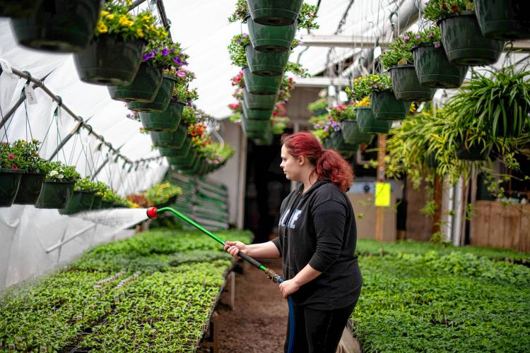 Food Growers And First Time Gardeners