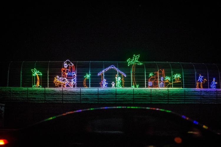 PHOTOS: Gift of Lights at NHMS
