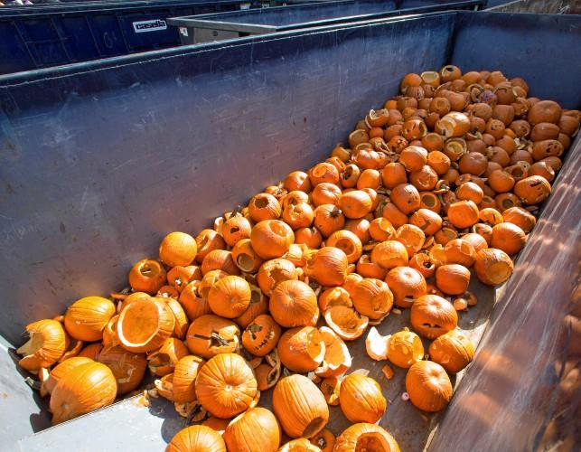 laconia pumpkin festival 2020