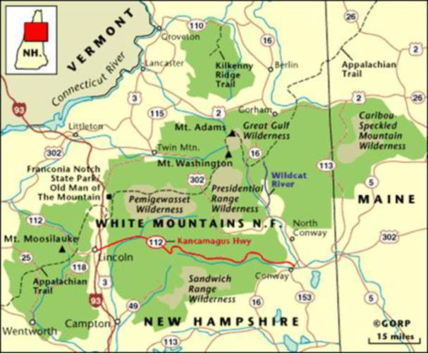 Christmas trees can be cut in White Mountain National Forest (but it ...