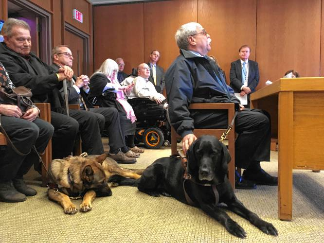 Service dog owners wag their finger at legislators thinking